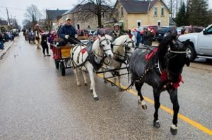 grey-county-holstein-parade